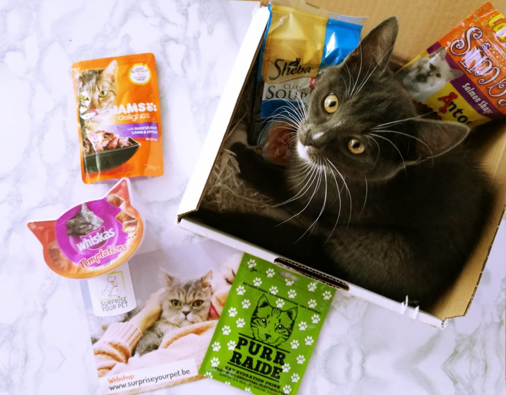 Surprise Your Pet Box